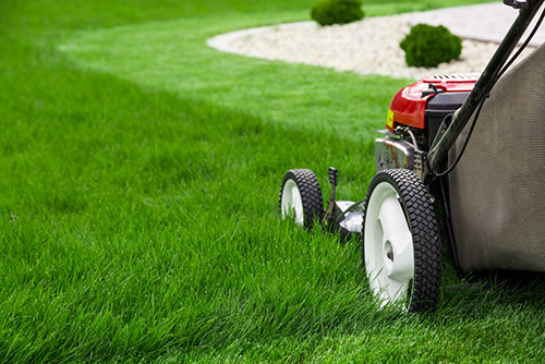 Landscaping Services Near Me
