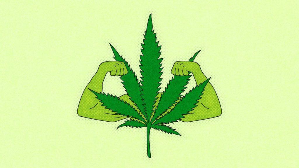 The Surprising Benefits Of Marijuana Edibles - READ HERE!